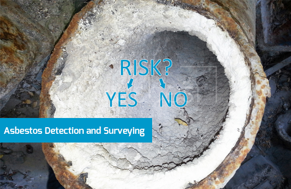 Asbestos Detection and Surveying